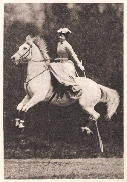 1000+ images about Sidesaddle on Pinterest.
