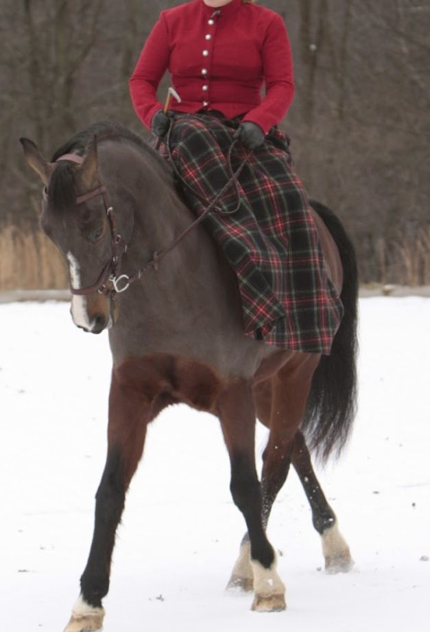 1000+ images about Side Saddle on Pinterest.