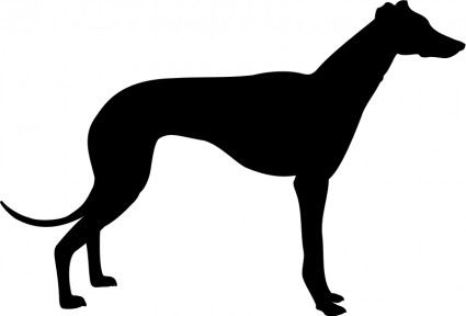 greyhound templates.