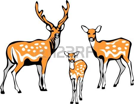 1,529 Fawn Stock Vector Illustration And Royalty Free Fawn Clipart.