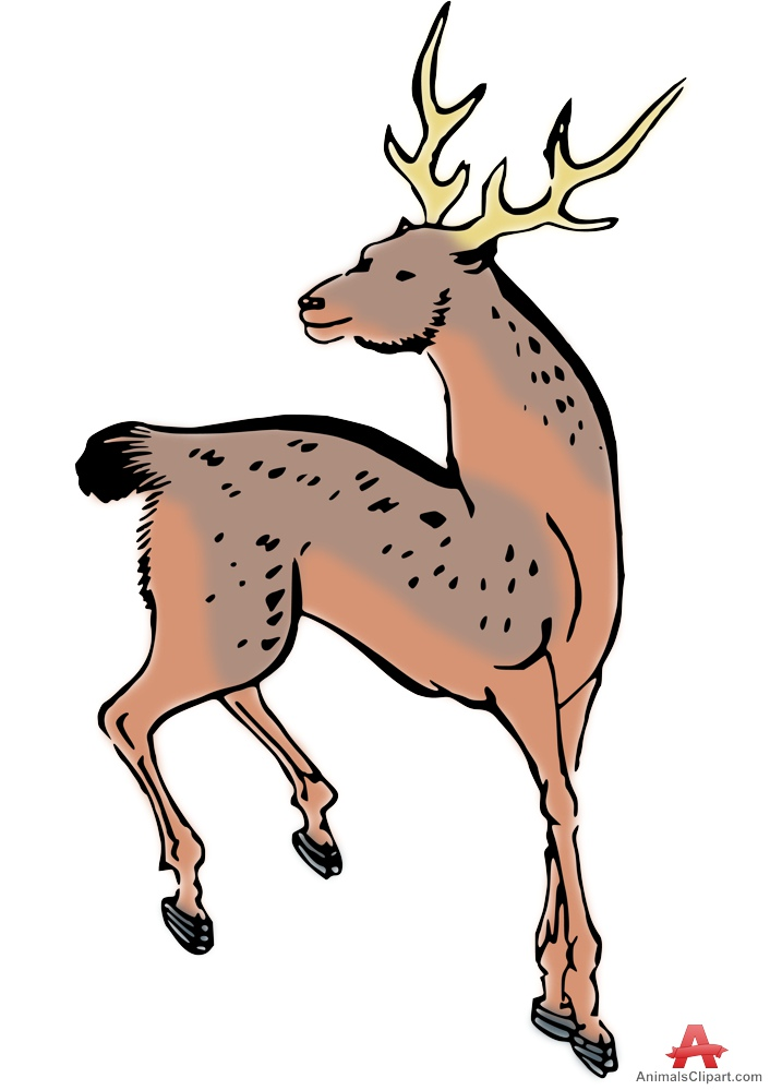 Clipart of Manchurian Sika Deer.