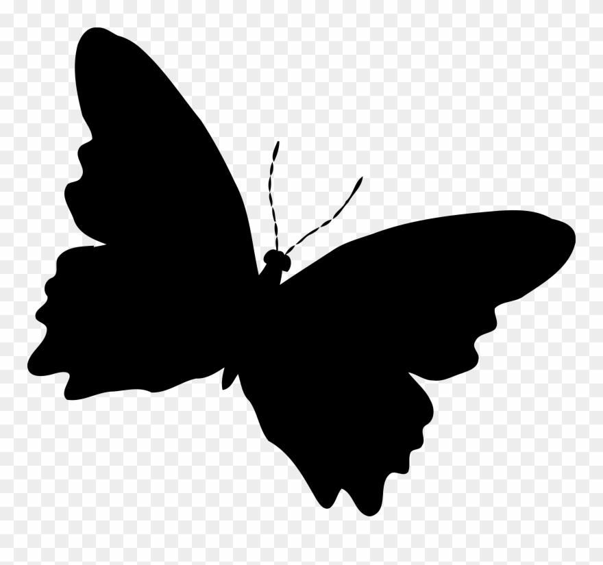 Silhouette Butterfly.