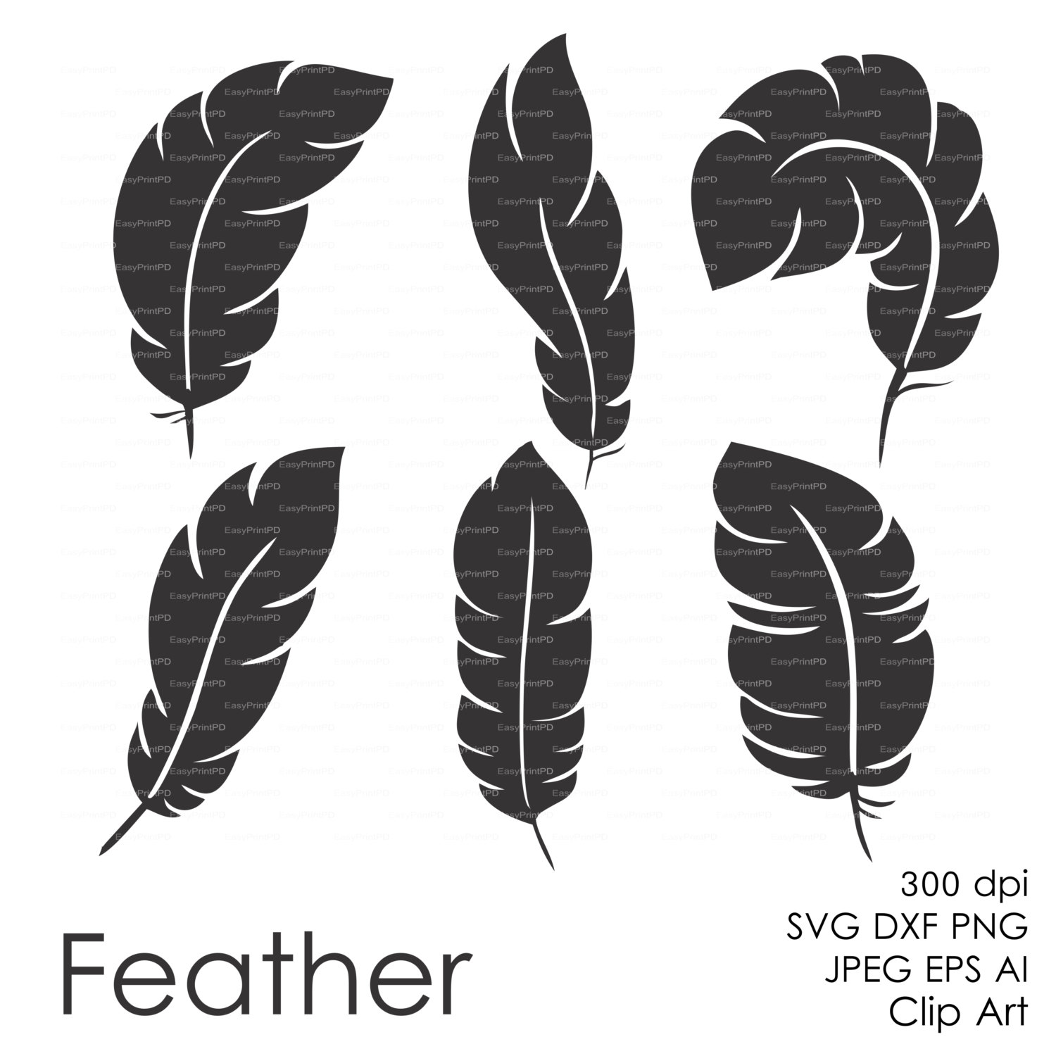 Feather plume (eps, svg, dxf, ai, jpg, png) Vector Digital ClipArt.