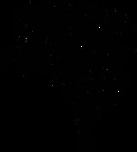 10107 tree silhouette clip art public domain.