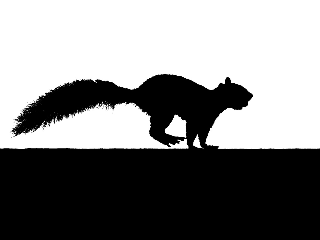 Running Squirrel Silhouette with nut.