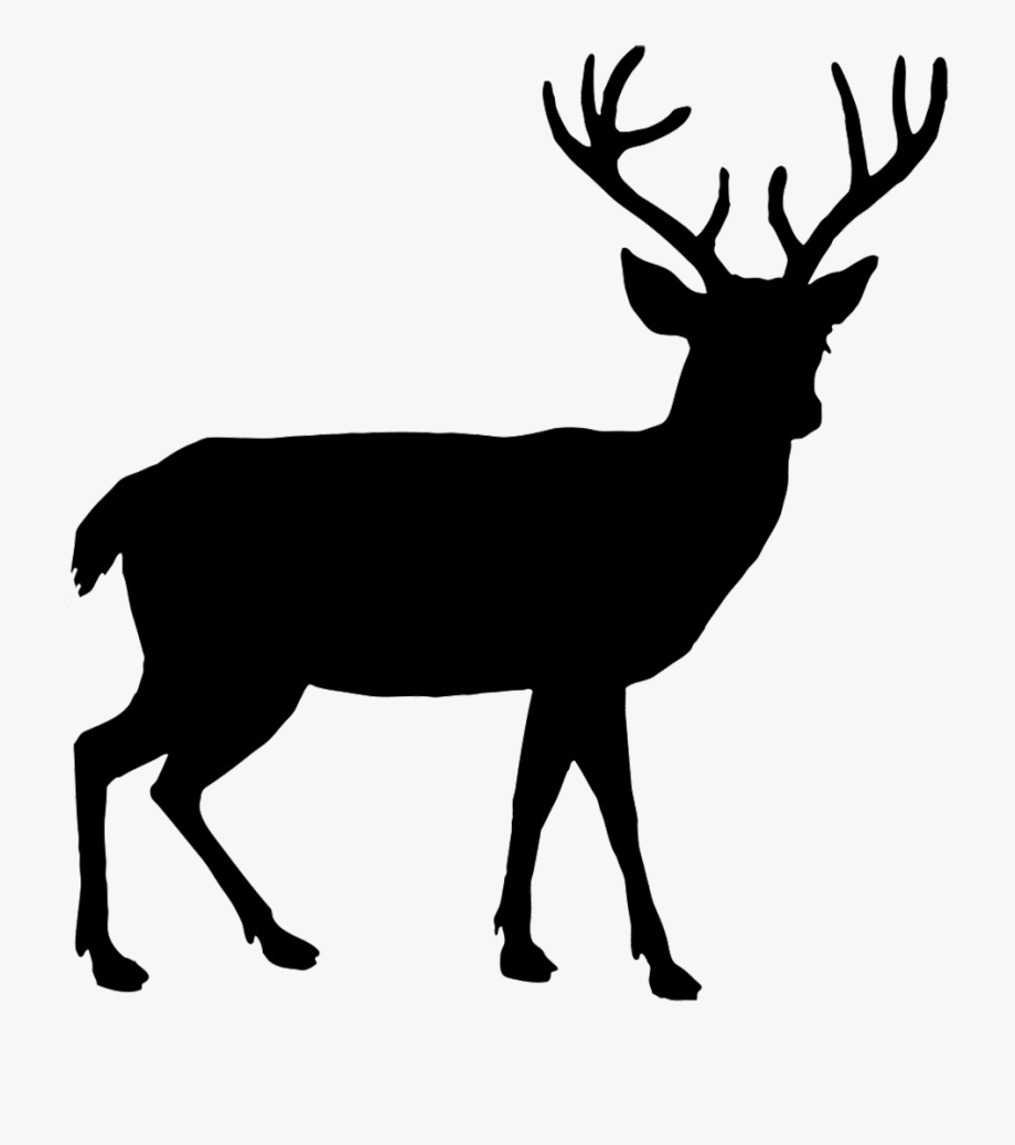 Animal Silhouettes Deer, Cliparts & Cartoons.