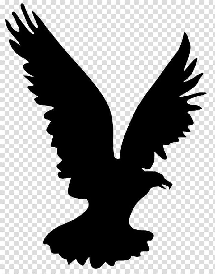Bald Eagle Bird Silhouette , Eagle Silhouette transparent.