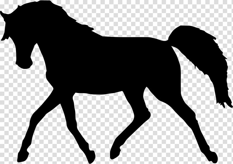 Standing Horse Silhouette , horse transparent background PNG.