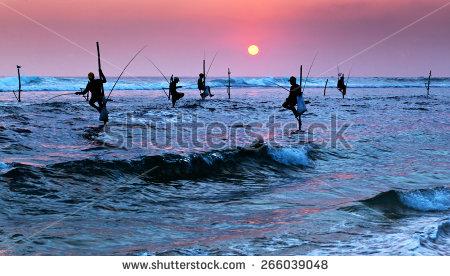 Sri Lanka Stock Photos, Royalty.
