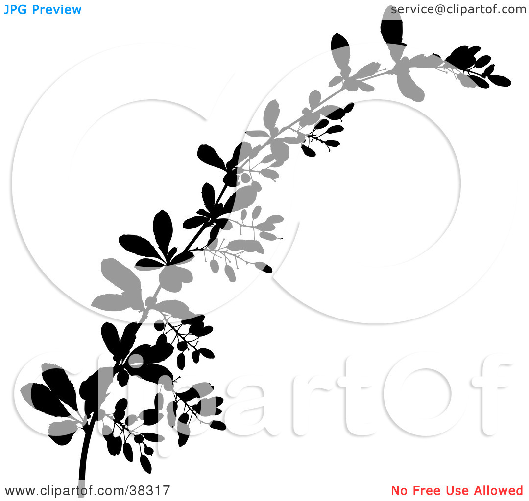 Clipart Illustration of a Black Tree Branch Silhouette by dero #38317.