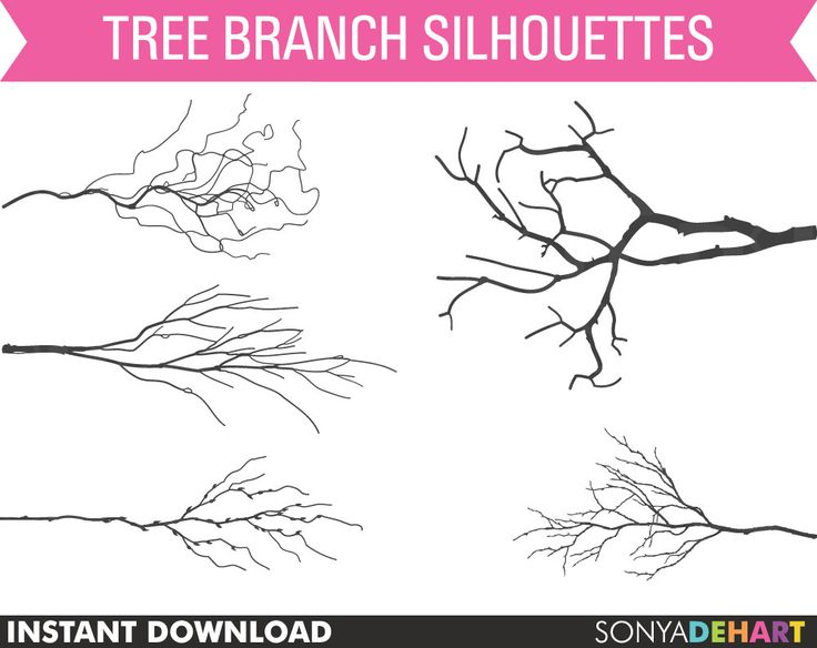 Silhouette of branches clipart #16