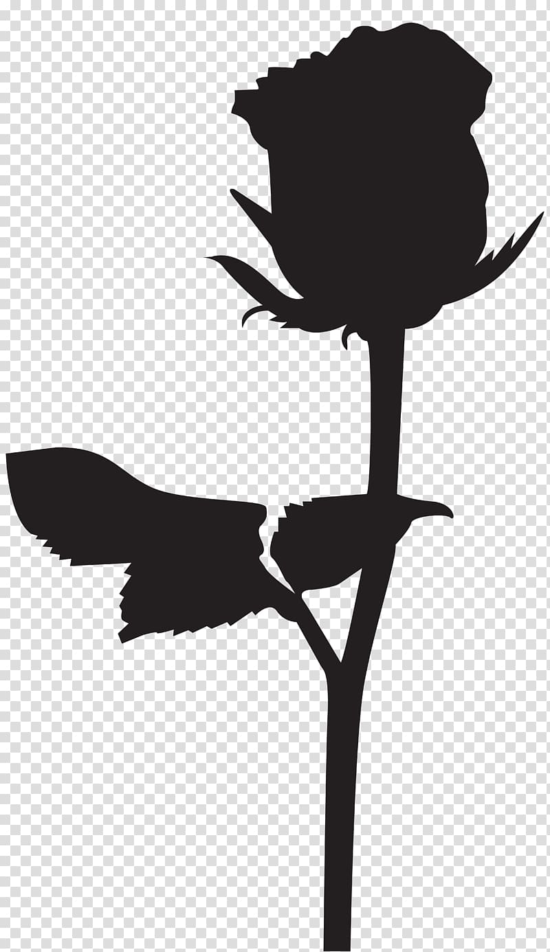 Silhouette of rose flower, Silhouette , Rose Silhouette.