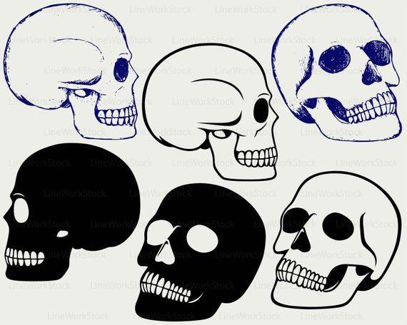 HUMAN SKULL svg/skull clipart/skull svg/skull silhouette.