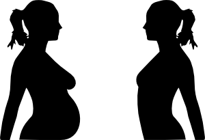 Pregnancy Silhouette Clip Art at Clker.com.