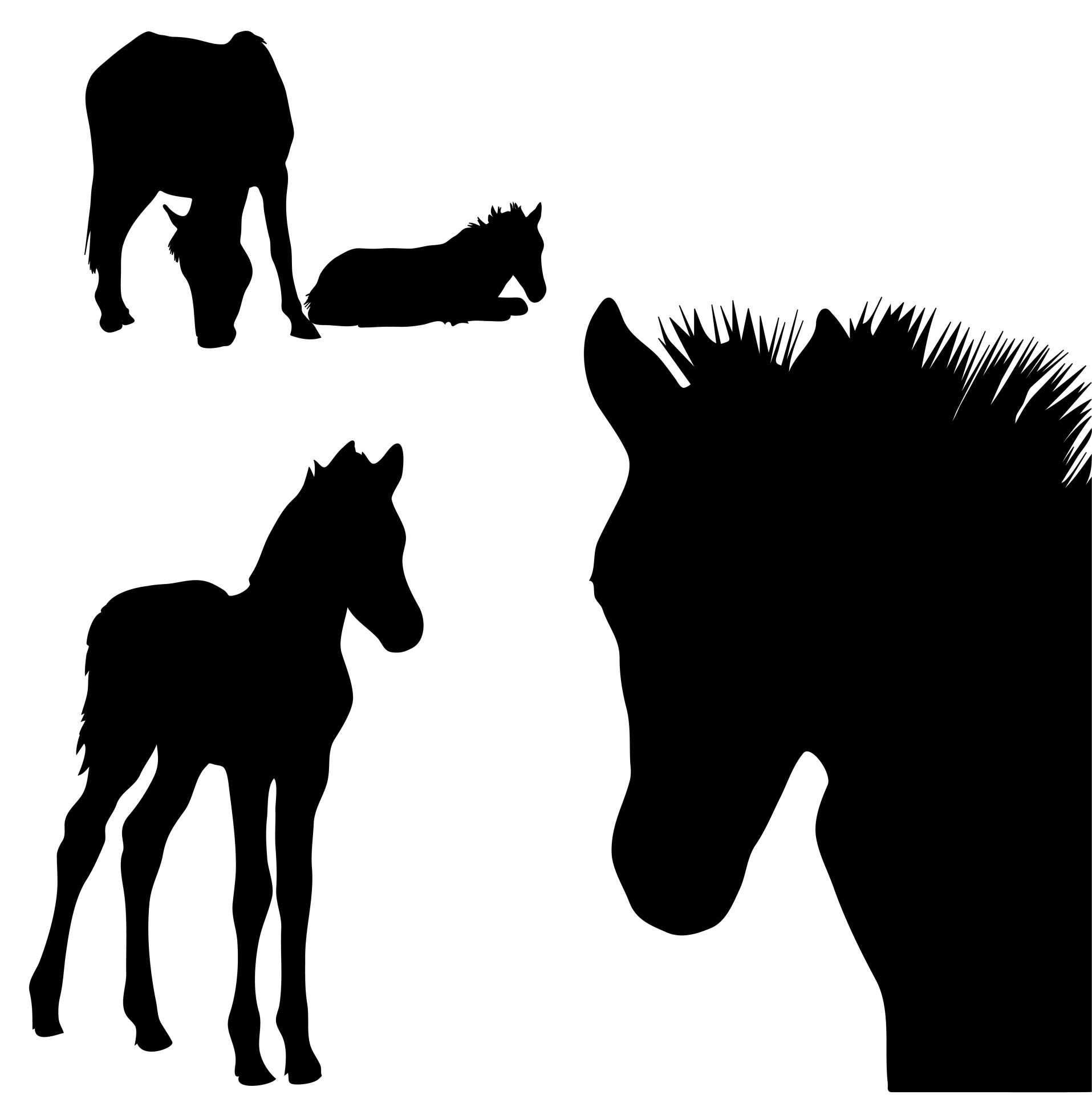 Horse Silhouettes Clipart Free Stock Photo.