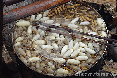 Silk Production In Laos Stock Photo.