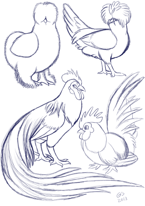 silkie chicken drawing.