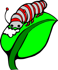 Clipart of silkworm.