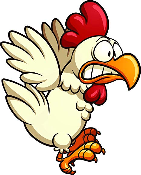 Amazon.com: Crazy Silly Running Scared Chicken Cartoon Vinyl.