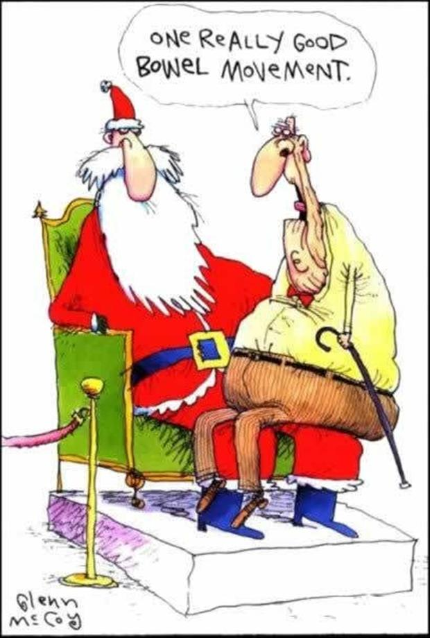 Funny Christmas Pictures.