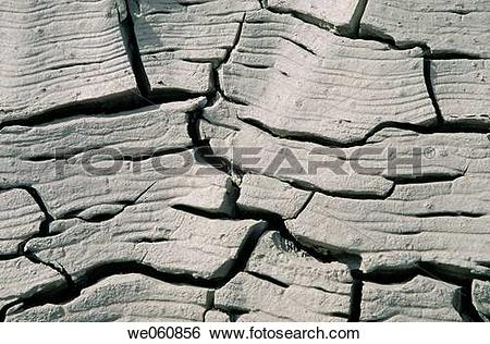 Stock Images of Dried and cracked silt we060856.