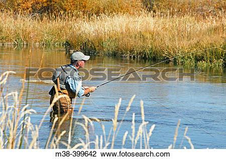 Stock Photo of Man fly fishing. Silver Creek, Idaho. USA m38.