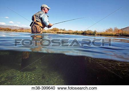 Stock Photography of Man fly fishing. Silver Creek, Idaho. USA m38.