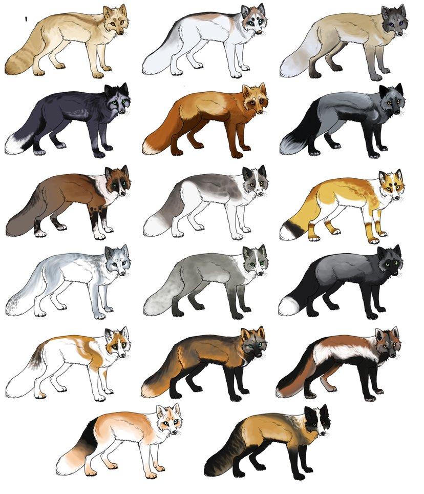 Fox adoptables .:ONLY #10 LEFT:. by BREL00M on DeviantArt.