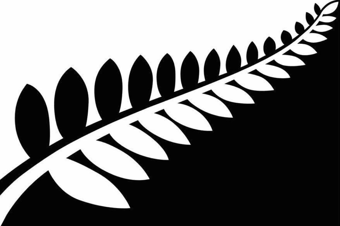 Silver fern clip art.