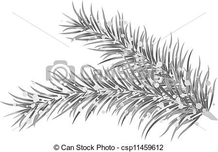 Vector Clip Art of Vector illustration of silver fir branches.