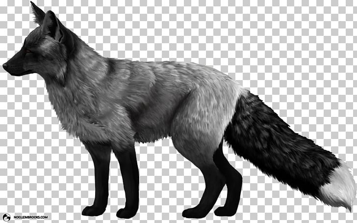 Domesticated Red Fox Arctic Fox Silver Fox Dog PNG, Clipart.