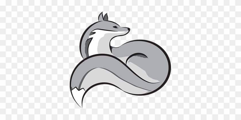 Silver, Fox, Animal.