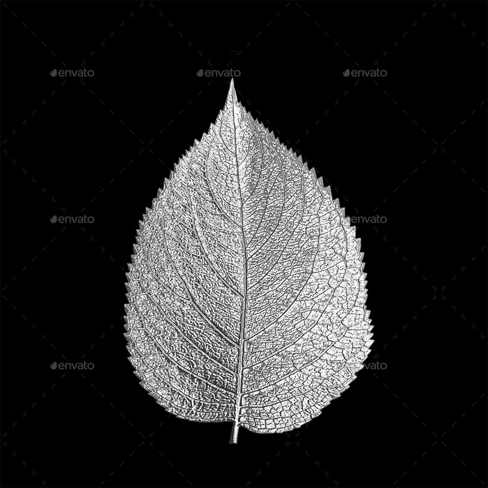 Metal Leaf PNG Set.