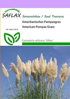 Amerikanisches Pampasgras (weiß)ca. 200 Samen Cortaderia selloana.