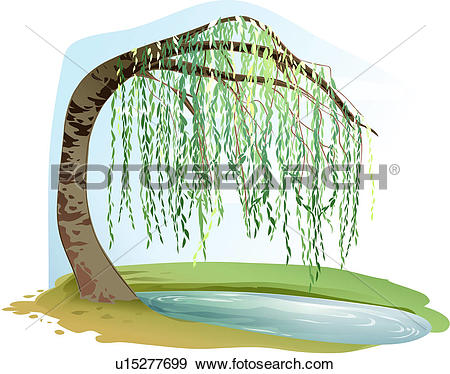 Willow Clip Art Illustrations. 1,495 willow clipart EPS vector.