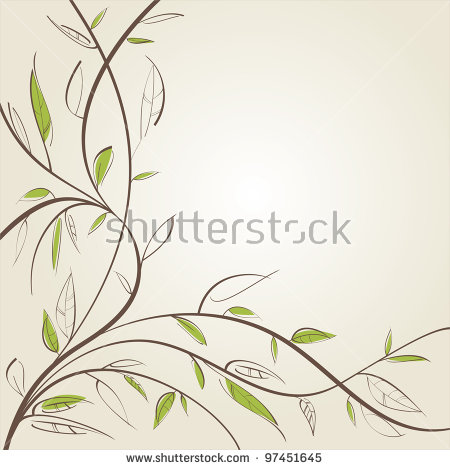 Willow Leaf Stock Photos, Royalty.