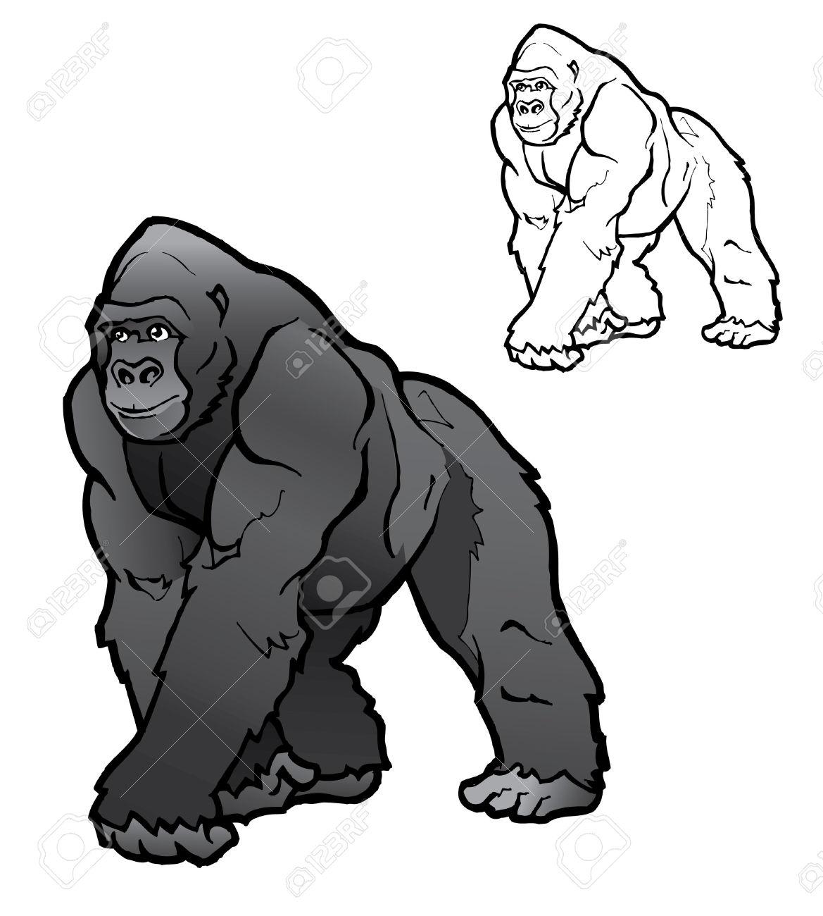Silverback gorilla clipart.