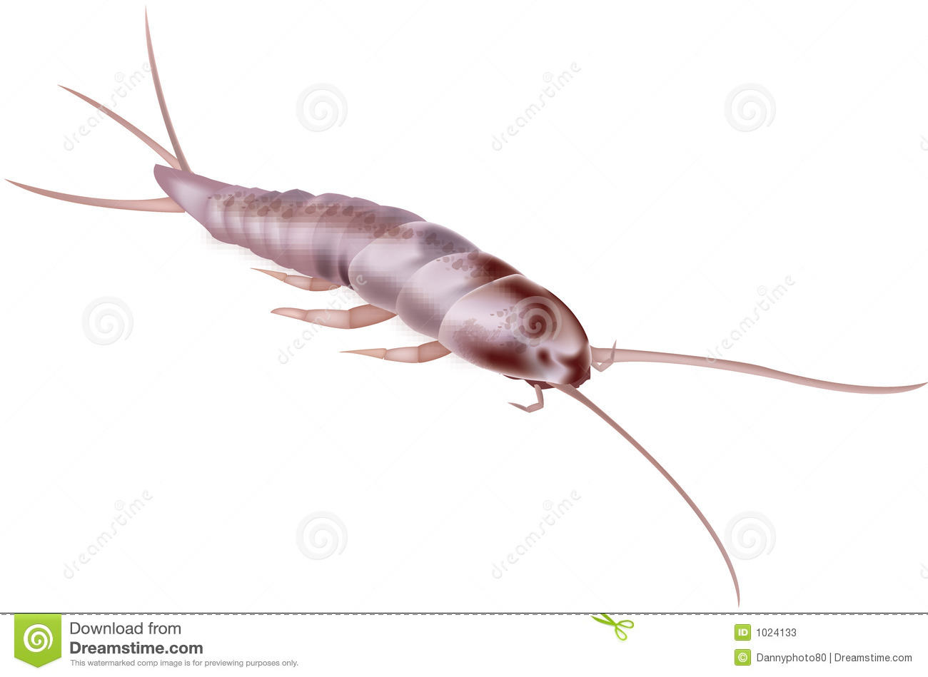 Clip Art of Silverfish.