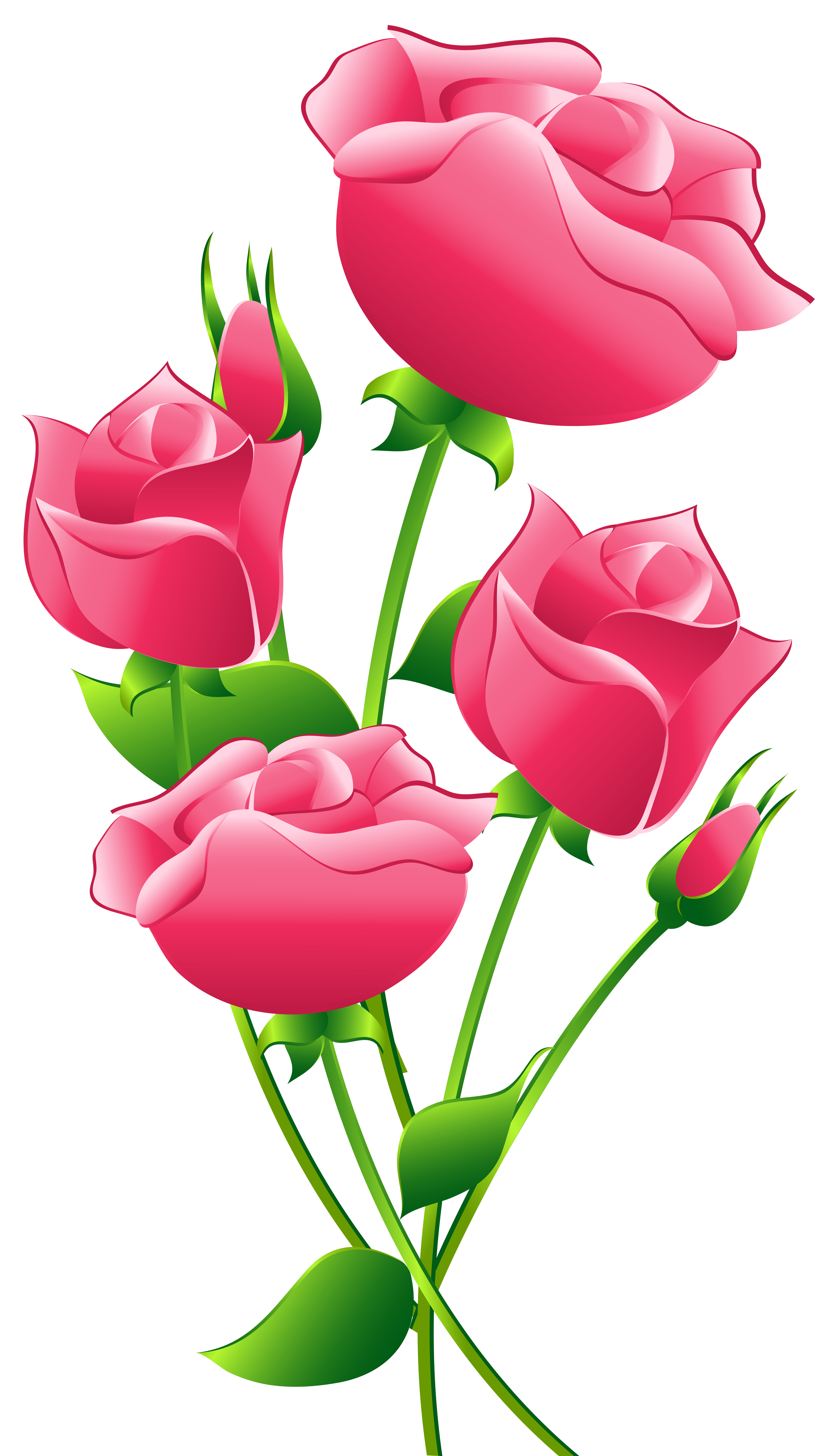 Pink roses clipart - Clipground