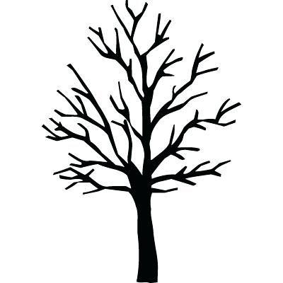 Bare Tree Template Bare Tree Coloring Page Bare Tree Outline.