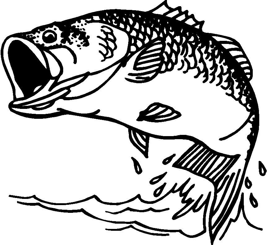 Bass Fishing Clipart Black And White.