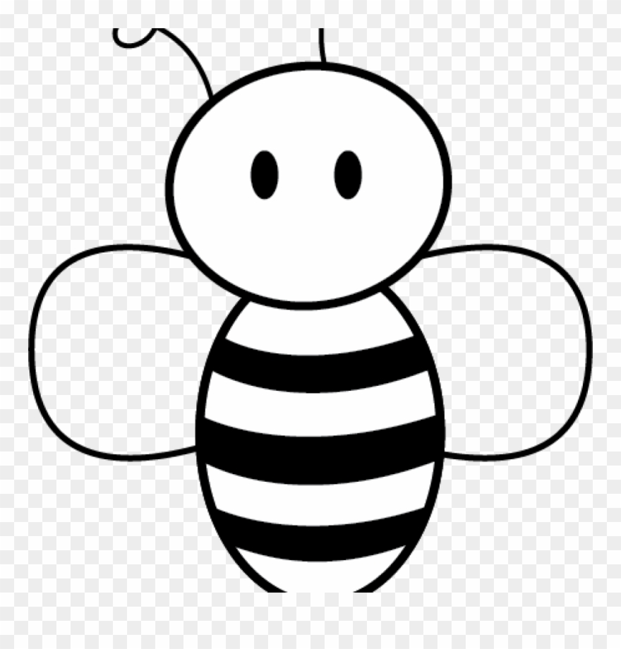 Honey Bee Drawing Images.
