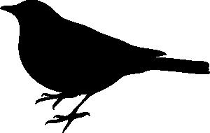 Profile Of A Bird clip art Free Vector / 4Vector.