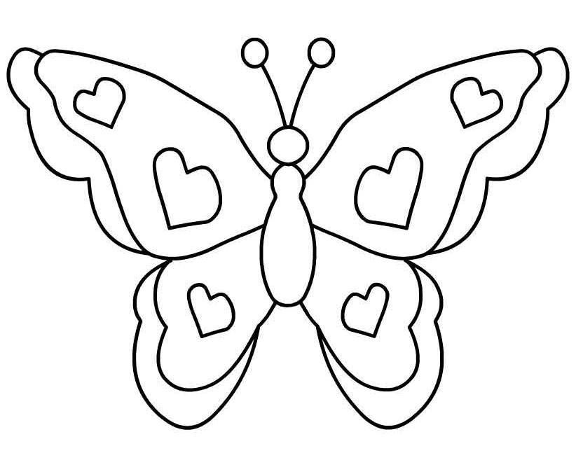 Butterfly image.
