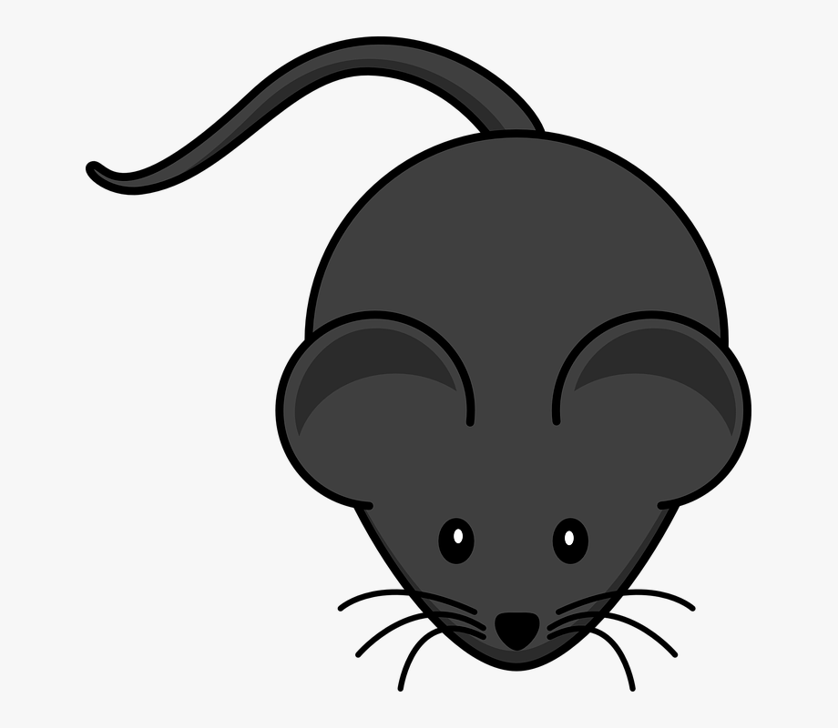 Mice Clipart Simple.