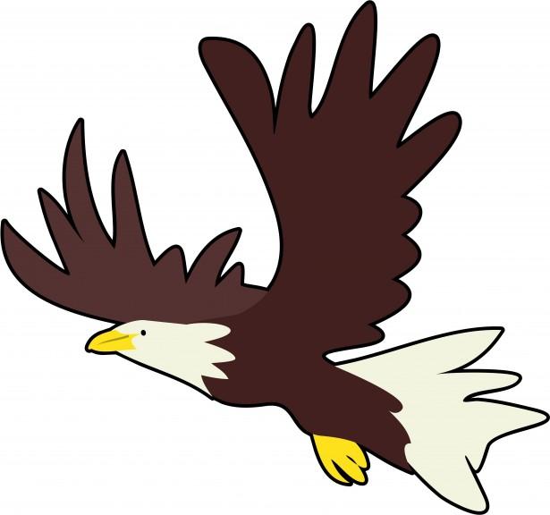 Bald Eagle Clipart Free Stock Photo.