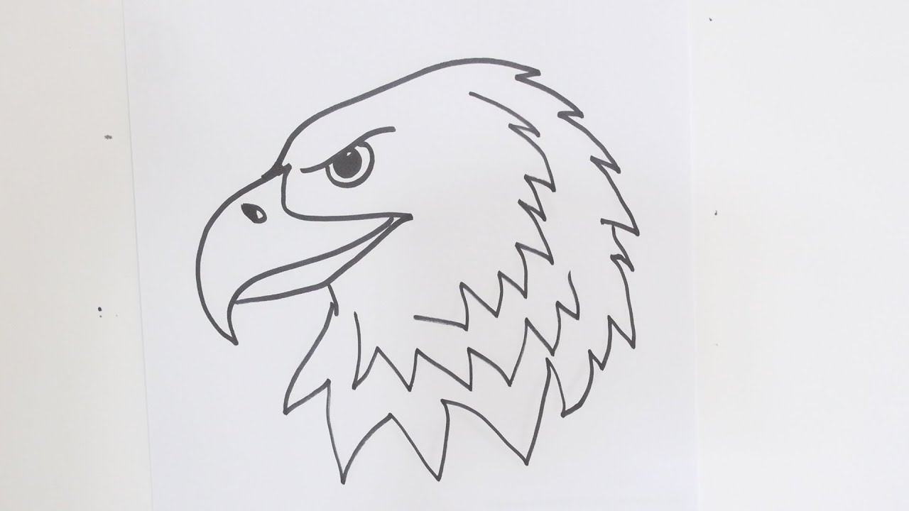How to Draw an Eagle\'s Head.