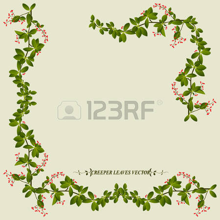 42,777 Vine Stock Vector Illustration And Royalty Free Vine Clipart.