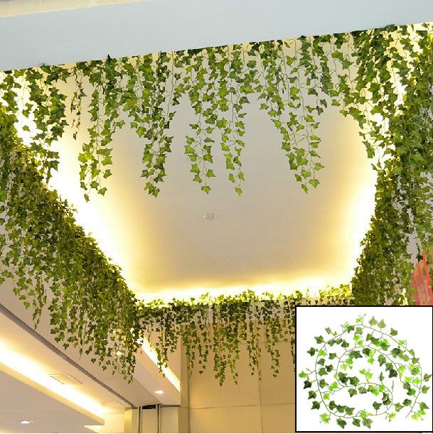 Simple ivy strands clining to wall clipart - Clipground