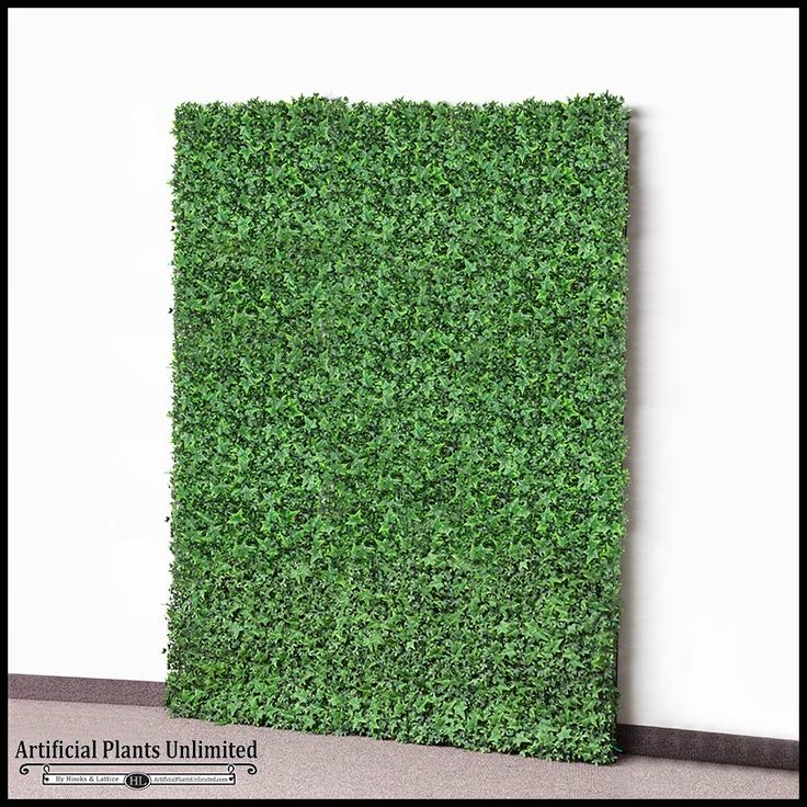 1000+ ideas about Ivy Wall on Pinterest.